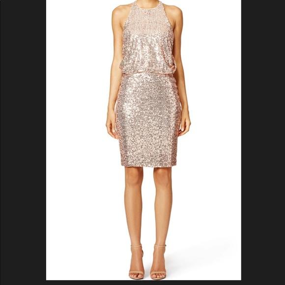 0cc87815 Badgley Mischka Blush Maria Dress. M_5c492a62c9bf50c1223fcf74